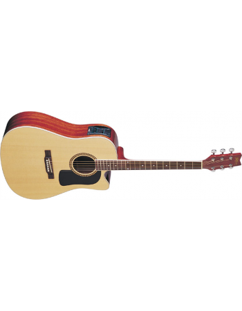 washburn-dreadnought-d10-series