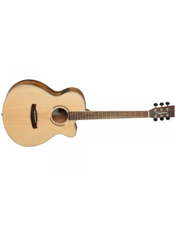 tanglewood-discovery-dbt-sfce-pw