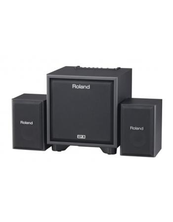 roland-cm110-cube-monitor