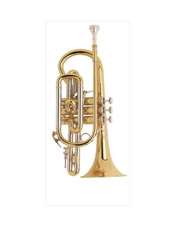 bach-professional-model-184ml-cornet