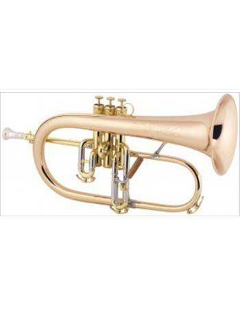 cg-conn-professional-model-1fr-flugelhorn-